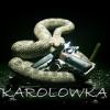 Karolowka